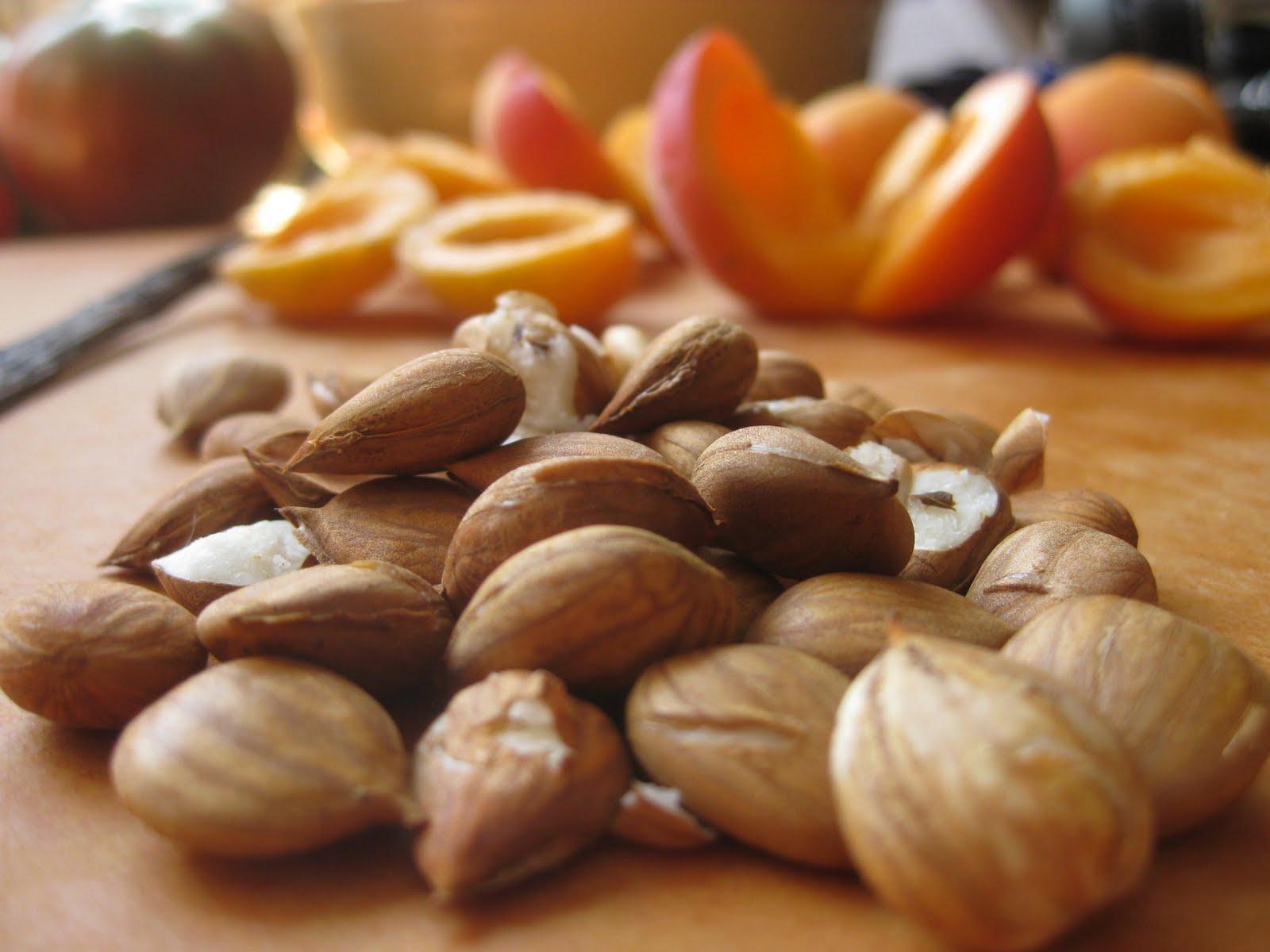 Apricot-kernels-2